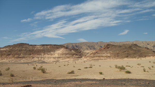 Sinai Desert, Egypt (Photo by Marc Ryckaert)  (CC2.0) (Resized-Cropped)