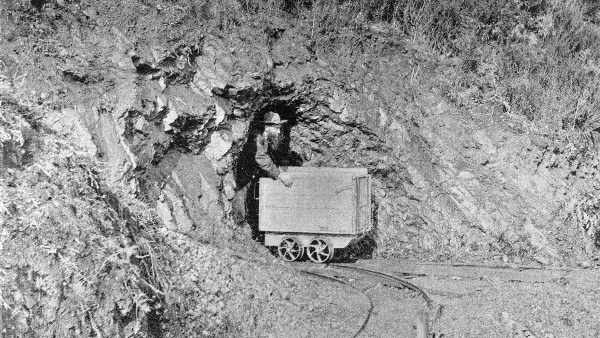 Gold Miner in New Zealand (1895)