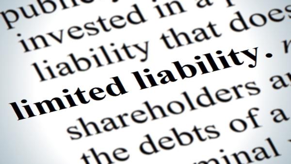 limited liability PUBLIC DOMAIN