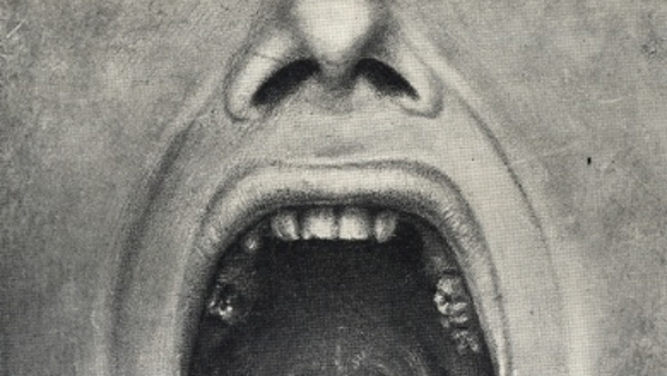 open mouth insane PUBLIC DOMAIN