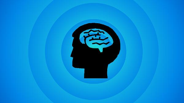 brain PUBLIC DOMAIN