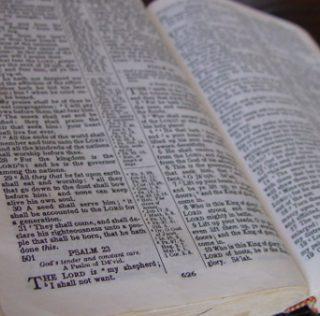 Experience Zacchaeus Generosity