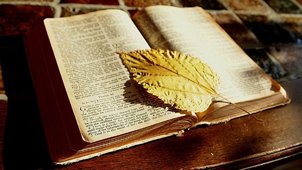 bible PUBLIC DOMAIN 3