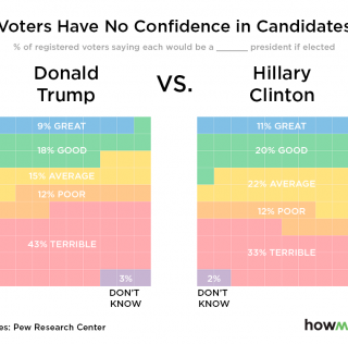 "Will the ""Least Terrible"" Candidate Win the Elections?"