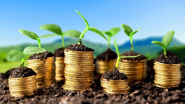 Growth green business money investment prosperity concept