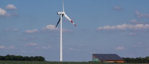 Windmills Kill Birds And Warm The Earth