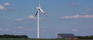 Windmills Kill Birds And Warm The Earth